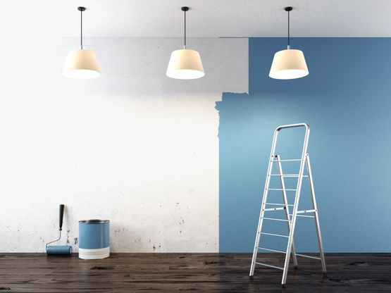 Expert painting in South Wales